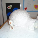 We have been learning about the Arctic and we made igloos!